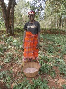 Marie Laeticia stands over a bowl of her beans harvested this season.