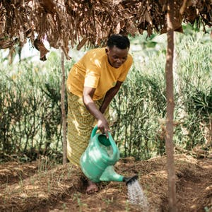 African woman watering the soil with a green watering can