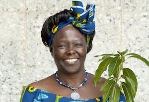 Wangari Maathai headshot as first African woman to win Nobel Peace Prize