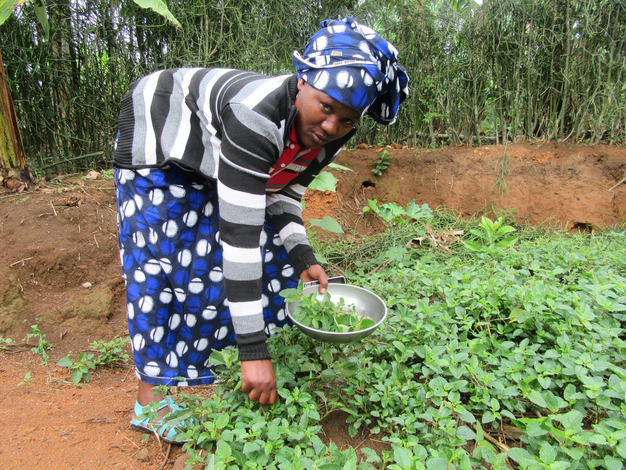 Anitha Burundi Fall