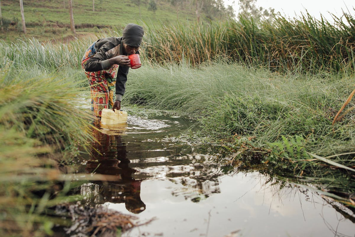 Woman in DRC draws water from a swamp with a cup