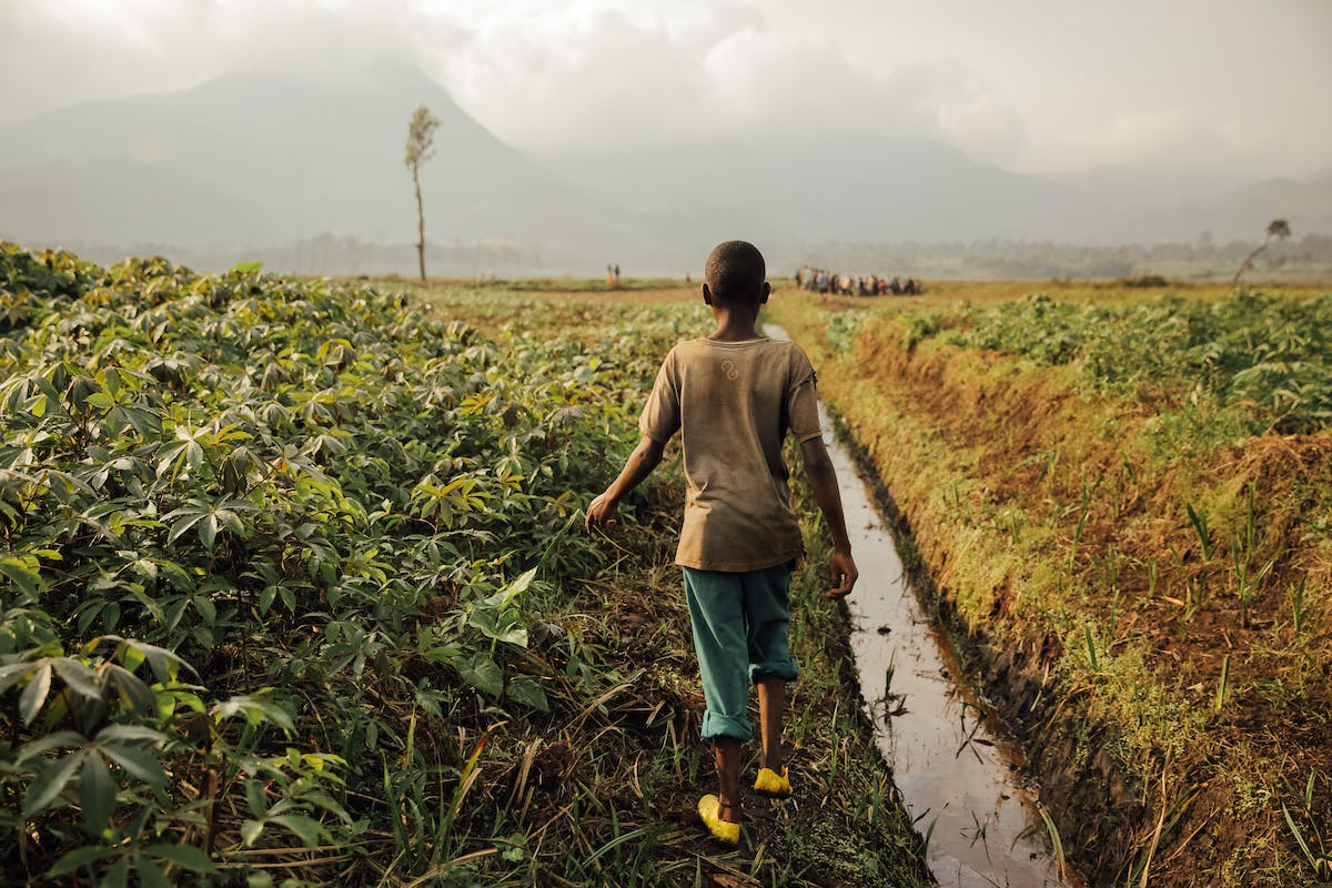 Boy walks in a lush green field next to a water canal in the Congo