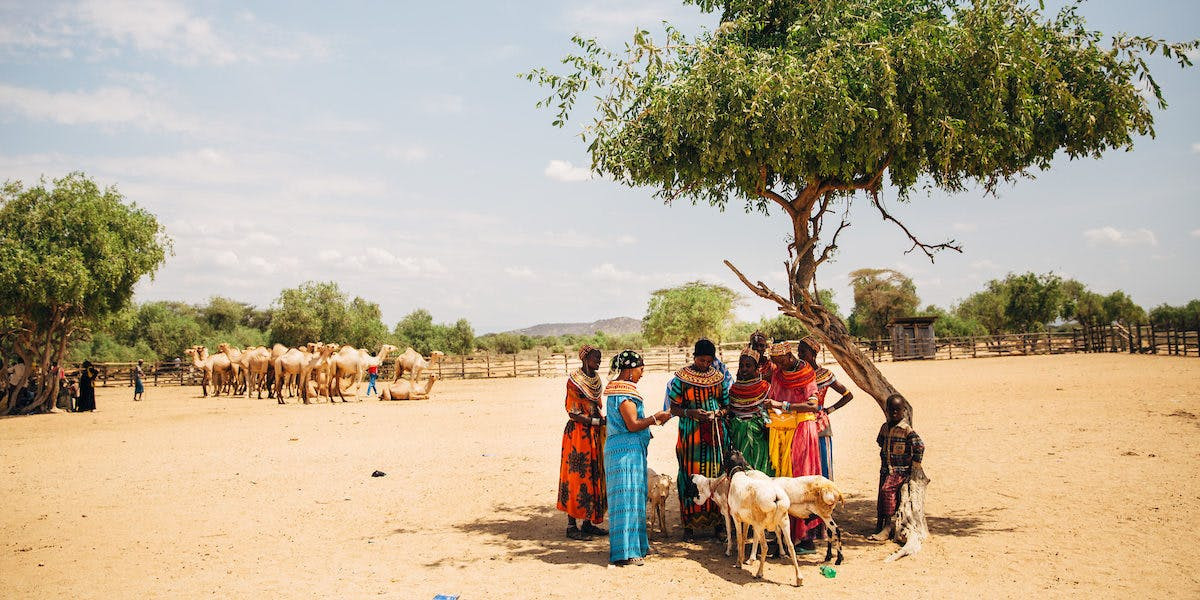 Women in Kenya gather under a tree in colorful clothing