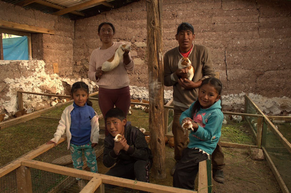 Peruvian family from Huancavelica in Andes mountains hold up their guinea pigs