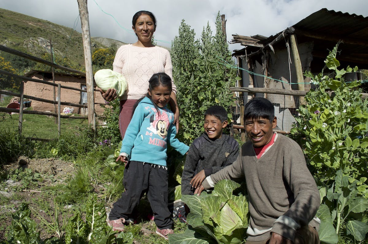 Peruvian family from Huancavelica in Andes mountains in their vegetable garden