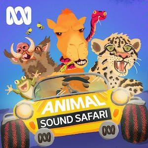 Animal Sound Safari Podcast