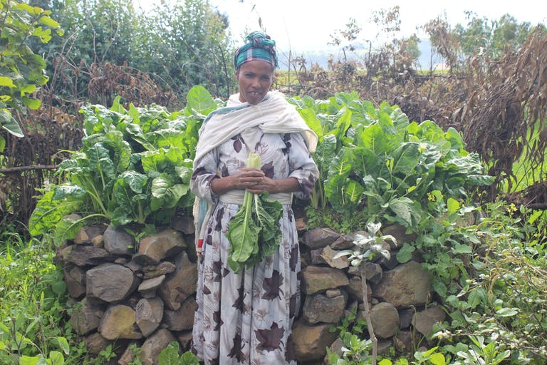 Woman in traditional Amhara Ethiopian dress standing in front of keyhole garden