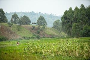 Burundi injustice