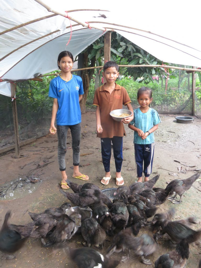 children-feeding-ducks